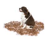 View Image 2 of Long Hair FURminator for Medium Dogs - Orange
