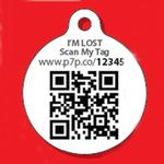 View Image 2 of Mickey Mouse and Pluto QR Code Pet ID Tag