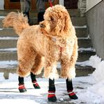 View Image 4 of Muttluks Fleece Lined Boots - Red