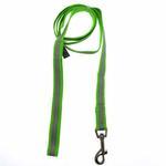 Precision Dog Leash - Lime Green