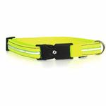 View Image 2 of Neon Dog Collar with White LEDs - Neon Yellow