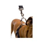 View Image 2 of No-Pull Dog Harness Deluxe Training Package - Black and Silver