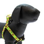 View Image 1 of Nuts Dog Harness by Up Country