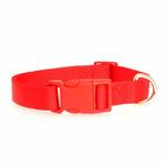 View Image 2 of Nylon Dog Collar by Zack & Zoey - Tomato Red
