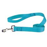 Zack and Zoey Nylon Dog Leash - Bluebird