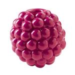 Orbee-Tuff Raspberry Dog Toy