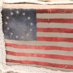 View Image 3 of Pony Express Dog Carrier - Betsy Ross
