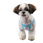 View Image 2 of Pre-School Dog Dress by Pinkaholic - Sky Blue