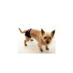 View Image 2 of Protective Hot Pants for Dogs - Black