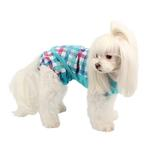 View Image 3 of Purity Dog Sanitary Pants by Puppia - Aqua