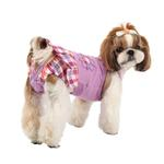 View Image 1 of Purity Dog Sanitary Pants by Puppia - Purple
