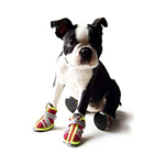 View Image 2 of Reflector Dog Boots - Fire Engine Red