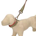 View Image 1 of Ribbon Pink & Green Stripe Dog Collar - Spring Fling