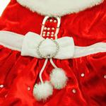 View Image 2 of Santa Paws Dog Dress