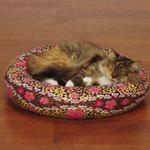 View Image 1 of Savvy Tabby Cozy Kitty Skull-fari Cat Bed