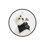 View Image 2 of Soft Harness Vest by Puppia - Black
