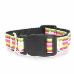 View Image 2 of Striped Daisy Dog Collar