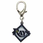View Image 1 of Tampa Bay Rays Logo Dog Collar Charm