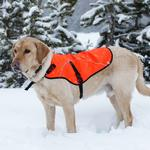 View Image 1 of Track Safety Dog Jacket by RuffWear - Blaze Off