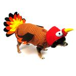 Turkey Dog Costume