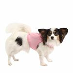 View Image 1 of Vera Pinka Dog Harness by Pinkaholic - Pink