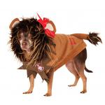 View Image 1 of Wizard of Oz's Cowardly Lion Dog Halloween Costume
