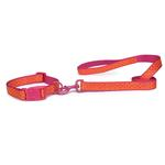 View Image 1 of Zack & Zoey Brite Polka Dot Dog Collar - Raspberry