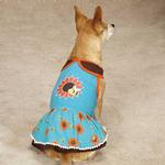 View Image 1 of Zack & Zoey Flutter Bugs Dog Dress - Bumble Bee