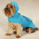 View Image 4 of Zack & Zoey Flutter Bugs Stowaway Dog Jacket - Bumble Bee