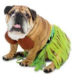 View Image 1 of Zelda Hula Halloween Dog Costume