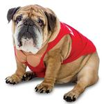 View Image 1 of Zelda Life Guard Halloween Dog Costume
