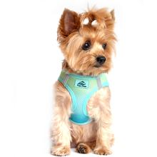 American River Choke-Free Dog Harness - Aruba Blue