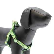 Argyle Dog Harness by Up Country - Blue & Green