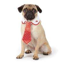 Aria Love Me Dog Necktie