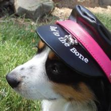 Bad to the Bone Biker Dog Hat - Black with Magenta Trim
