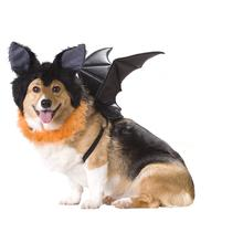 Bat Halloween Dog Costume