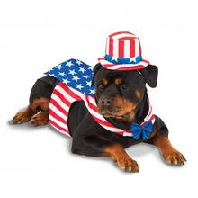 Big Dog Uncle Sam Dog Costume