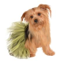 Black and Yellow Dog Tutu