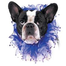Blue Rhinestone Dog Neck Scrunchy