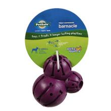 Busy Buddy Barnacle Dog Toy - Purple