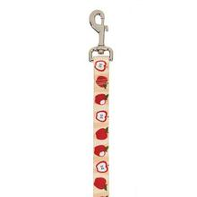 Casual Canine Harvest Dog Leash - Apples
