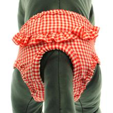 Checkered Dog Sanitary Pants by Puppe Love - Red