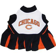 Chicago Bears Cheerleader Dog Dress