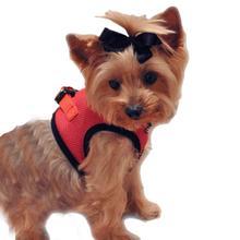 Choke-Free Mesh Step-In Dog Harness - Flame Red
