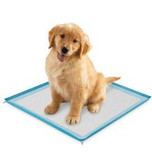 ClearQuest Silicone Puppy Pad Holder - Blue
