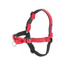 Deluxe Easy Walk Harness - Rose and Black