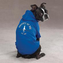 Dog is Good Solid Dog Hoodie - Sky Diver Blue