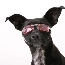 Doggles - K9 Optix Sunglasses for Dogs - Pink Heart Lens