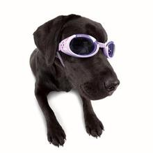 Doggles - ILS Lilac Frame with Flowers Lilac Lens