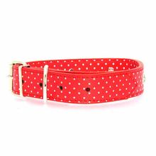 Canine Charmers Dog Collar - Red Stars
